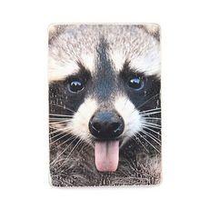 "фото 1 - Постер ""Raccoon #1"""