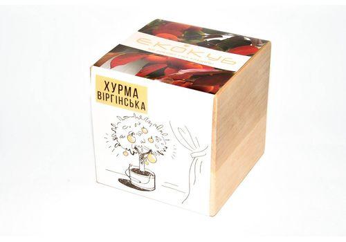 """Набор для выращивания Екокуб """"Хурма Виргинская"""", фото 1"""