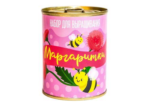"""зображення 1 - Консерва-рослина Papadesign """"Маргаритки"""" 73*95 мм"""
