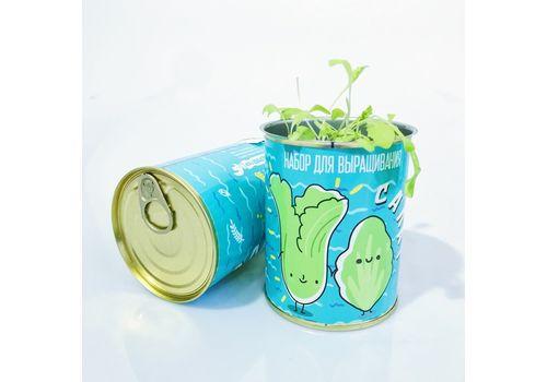 "фото 5 - Консерва-растение Papadesign ""Салат"" 73*95 мм"